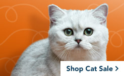 petsmart pet supply sale cat food cat toys cat furniture sale