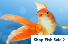 petsmart pet food fish food fish supplies aquatic animals supply sales